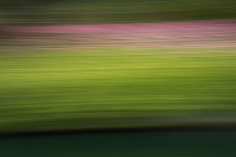 Panning photography for abstract landscape photos