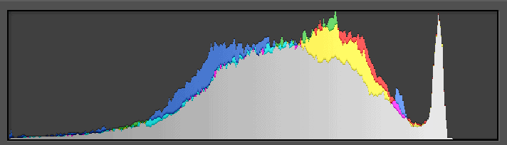 Histogram of image too overexposed to fix in Lightroom