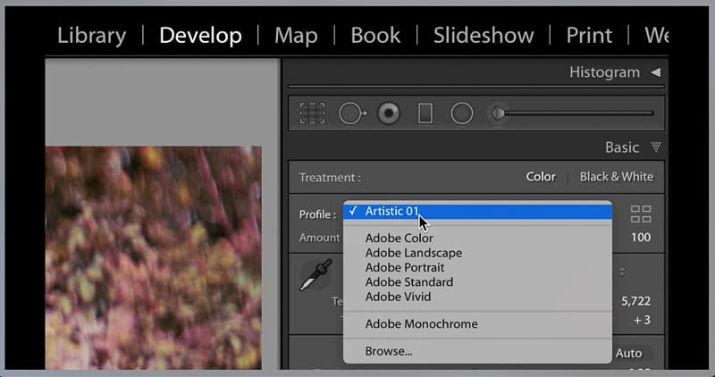 Lightroom profiles for artistic effects