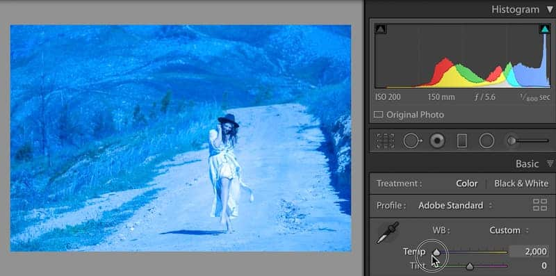 Lightroom white balance slider for cool colors in photos