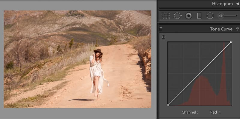 Red RGB channel in tone curve adjusts color in photography
