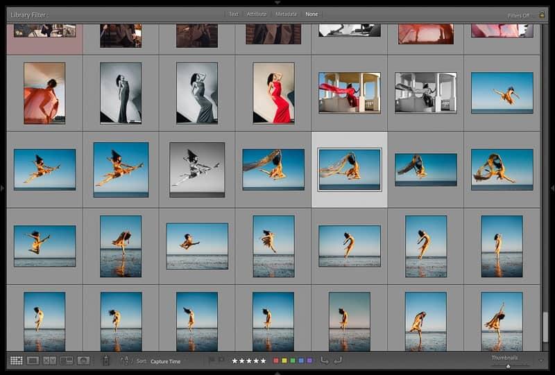 Lightroom full screen grid view